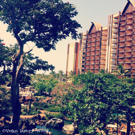 Aulani from the ground